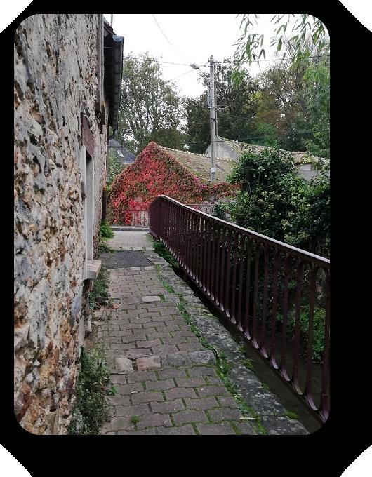 Краски осени во Франции 37_3710