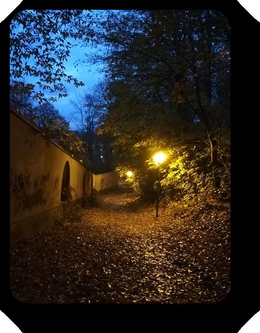 Магия французской ночи 37_3711