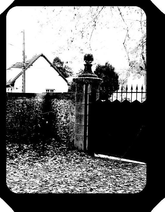 Очарование Франции в черно-белом облачении 37_3713