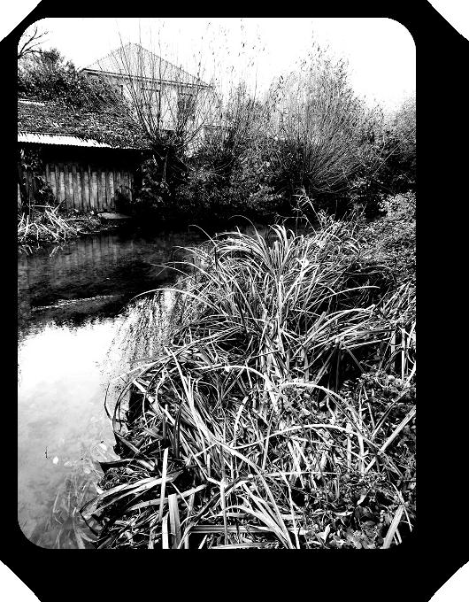 Очарование Франции в черно-белом облачении 38_3813
