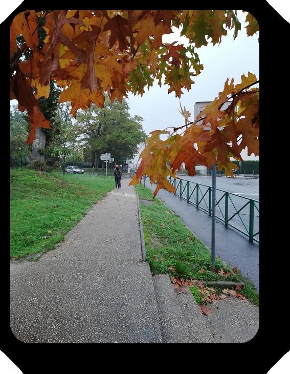 Краски осени во Франции 39_3910
