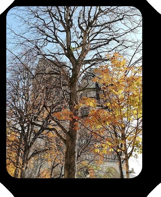 Шарм и очарование Парижа 39_3914