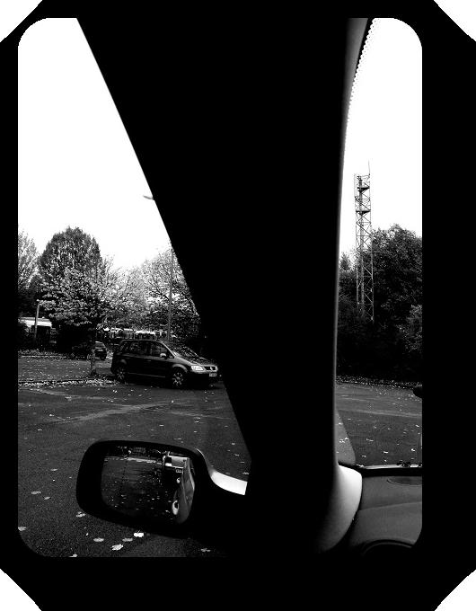Очарование Франции в черно-белом облачении 3_318