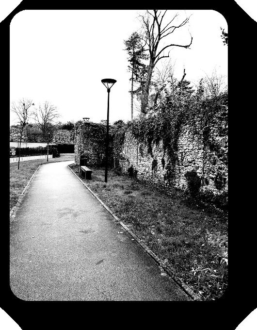 Очарование Франции в черно-белом облачении 40_4013