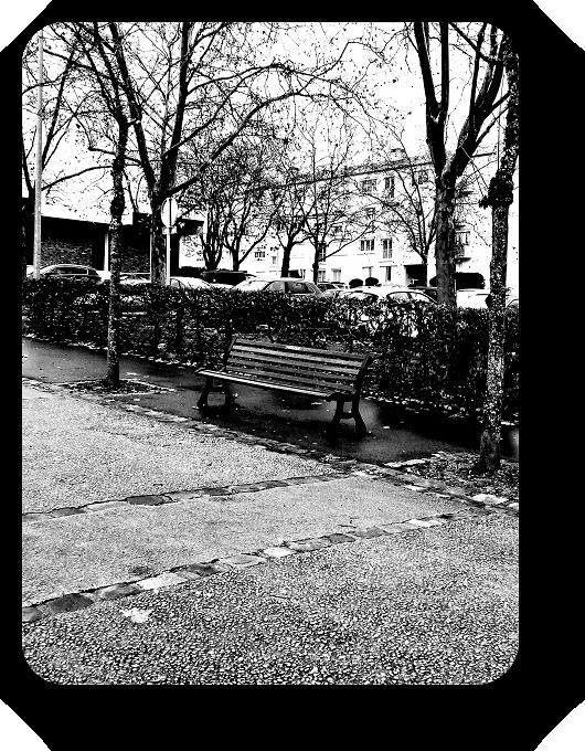 Очарование Франции в черно-белом облачении 45_4515