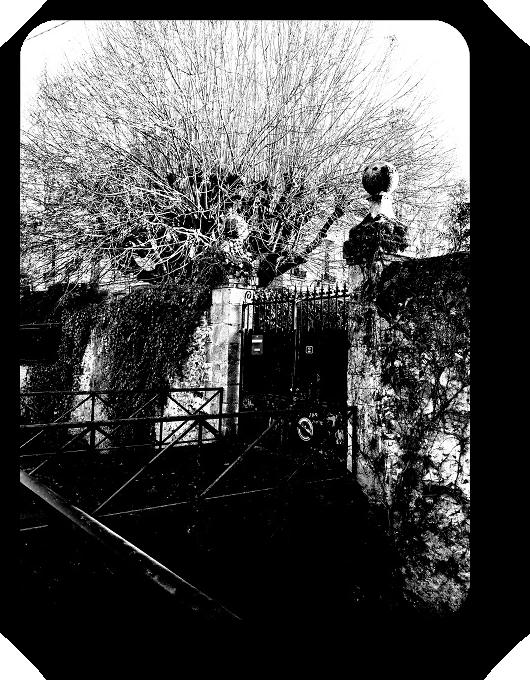 Очарование Франции в черно-белом облачении 46_4614