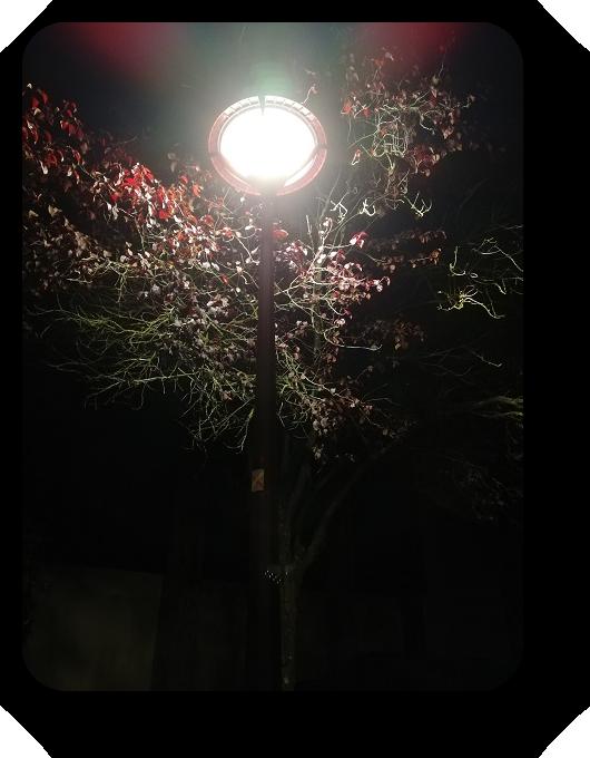 Магия французской ночи 48_4811