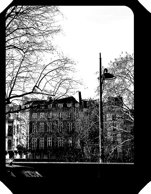Очарование Франции в черно-белом облачении 48_4814