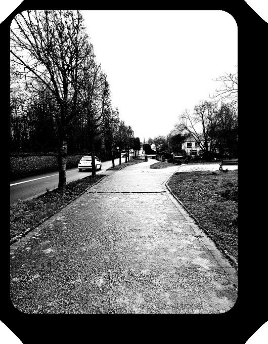 Очарование Франции в черно-белом облачении 50_5017