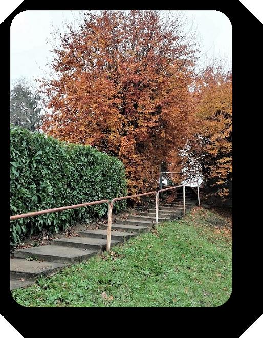 Краски осени во Франции 51_5110