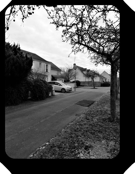Очарование Франции в черно-белом облачении 55_5513