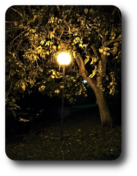 Магия французской ночи 58_5811