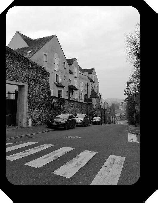 Очарование Франции в черно-белом облачении 58_5813