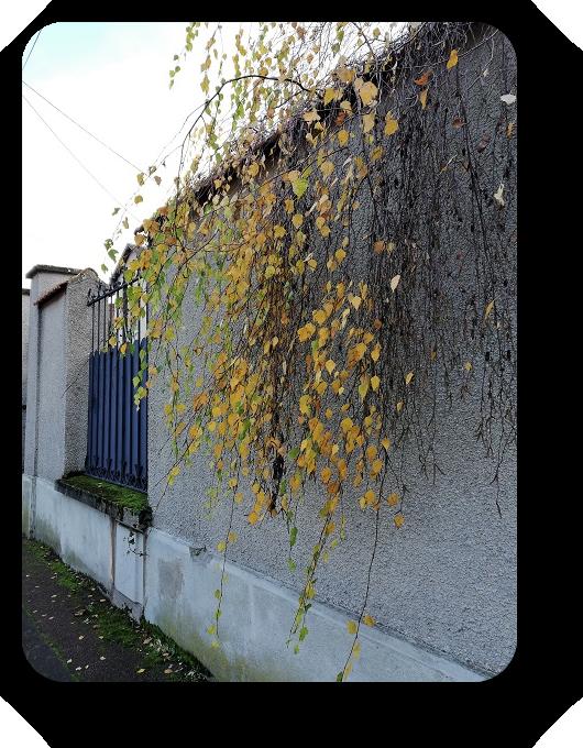 По улицам французских городов 59_5912