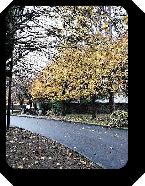 По улицам французских городов 60_6013