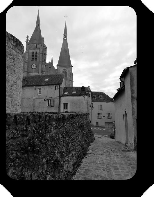 Очарование Франции в черно-белом облачении 60_6014