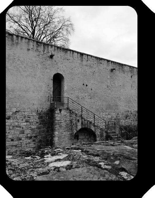 Очарование Франции в черно-белом облачении 62_6214