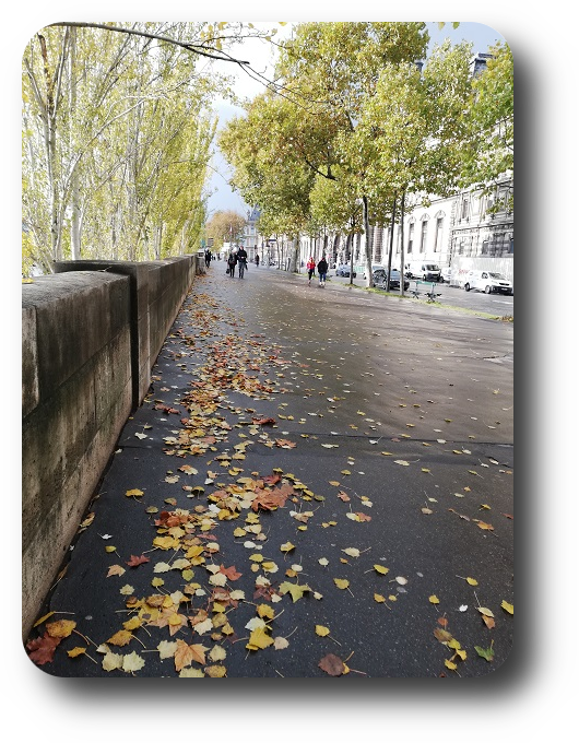 Шарм и очарование Парижа 62_6216