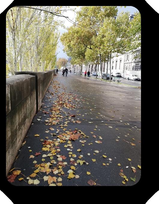 Шарм и очарование Парижа 62_6217