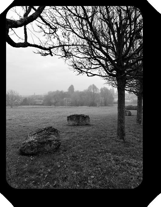 Очарование Франции в черно-белом облачении 64_6413