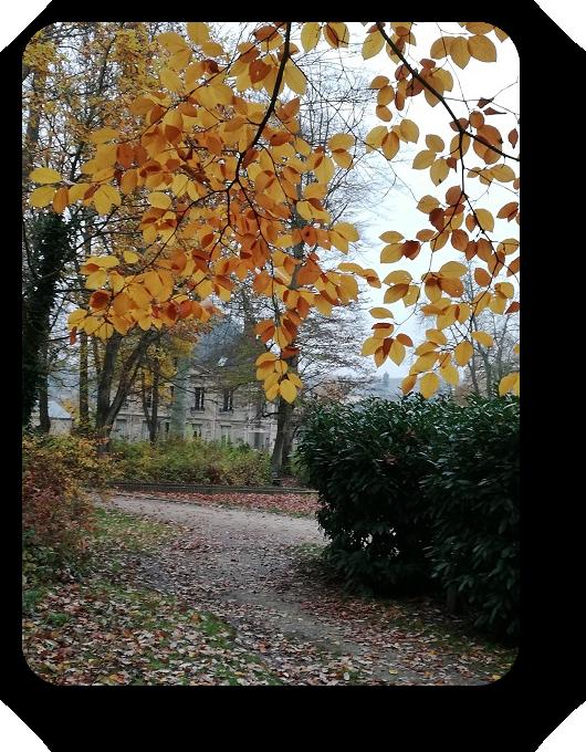 Краски осени во Франции 65_6511