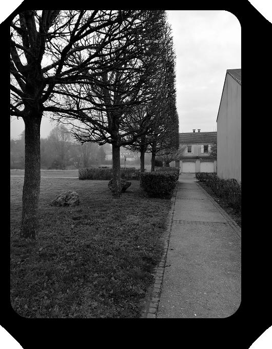 Очарование Франции в черно-белом облачении 65_6514