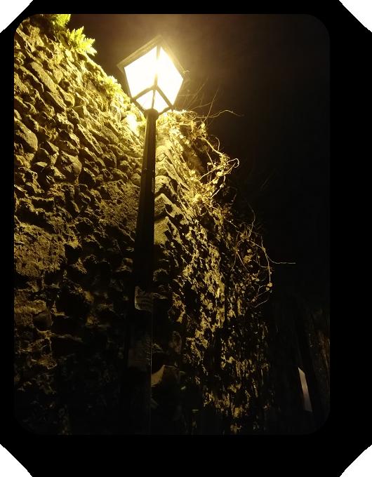 Магия французской ночи 6_612