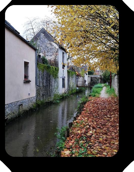 Краски осени во Франции - Страница 2 80_8011