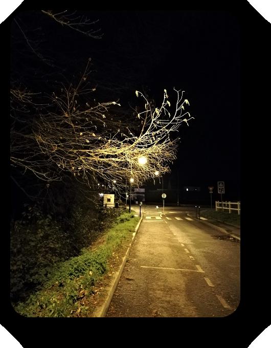 Таинственность ночи (фото) 84_8412