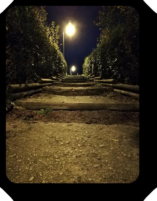 Таинственность ночи (фото) 85_8513