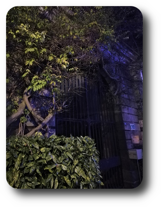 Магия французской ночи - Страница 2 88_8811