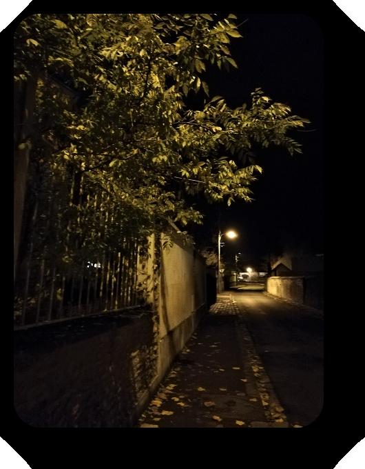 Магия французской ночи - Страница 2 89_8911