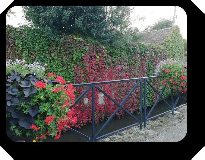 Краски осени во Франции 8_811