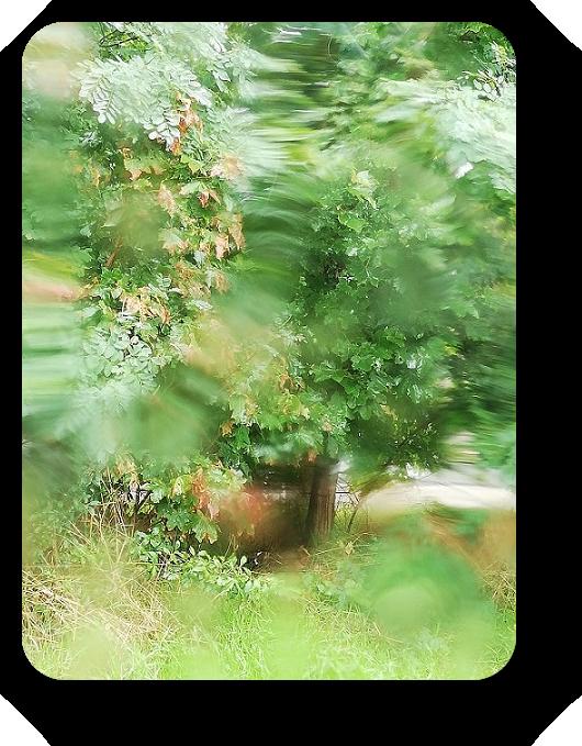 Краски осени во Франции 9_910
