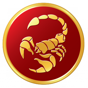 Сексуальная характеристика знака СКОРПИОН Scorpi10