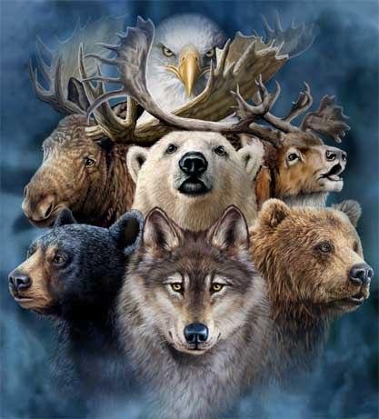 Духовное Животное Unname14