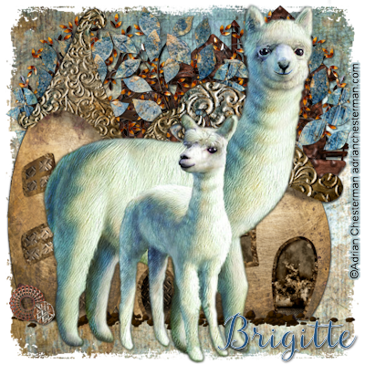SHOW OFF ANIMAL TAGS Alpaca15