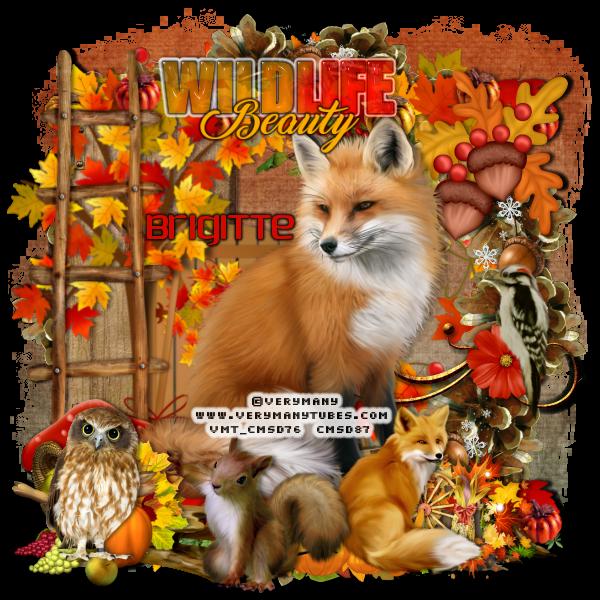 SHOW OFF ANIMAL TAGS Animal63