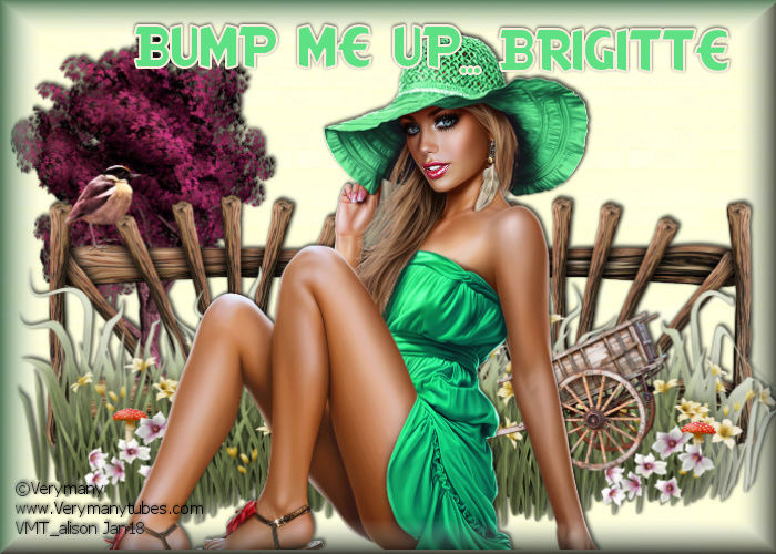 BUMP ME UP!!! - Page 3 Bump_m13