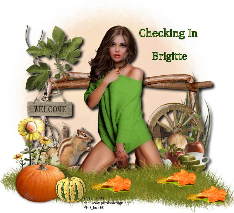 NOVEMBER CHECKING IN Check_83