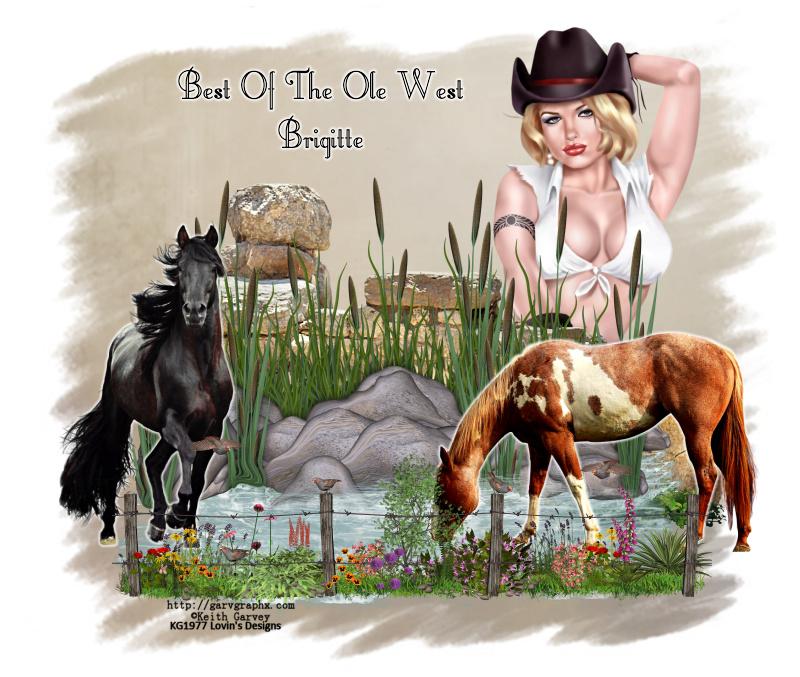 COWBOY/COWGIRL TAGS Cowboy25