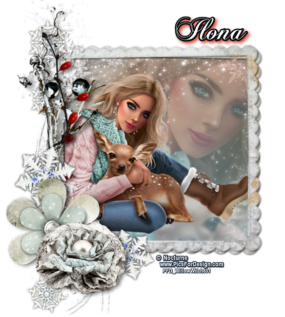 ILONA IS OUR PRINCESS FOR THE MONTH OF NOVEMBER! - Page 2 Ilonan10