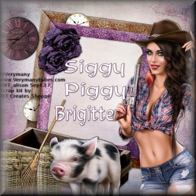 Who's a Siggy Piggy - Page 3 Siggy_12