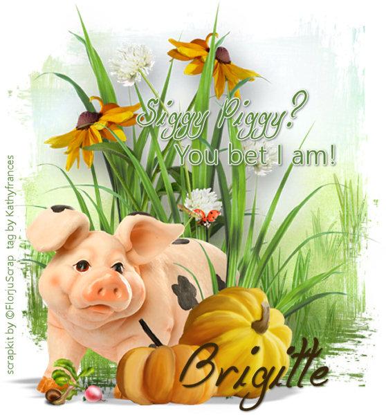 Who's a Siggy Piggy - Page 5 Siggy_24