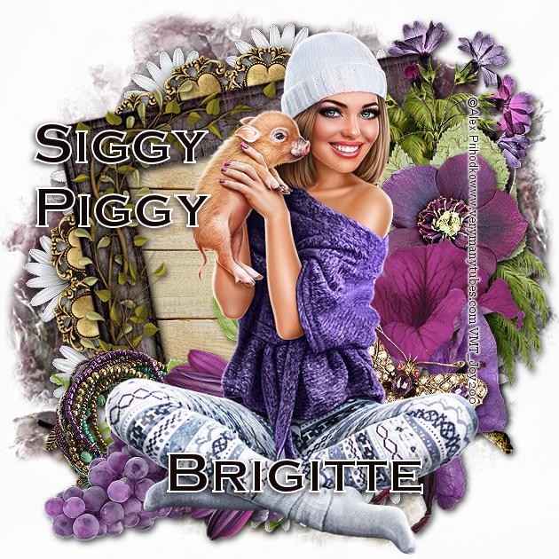 Who's a Siggy Piggy - Page 6 Siggy_29