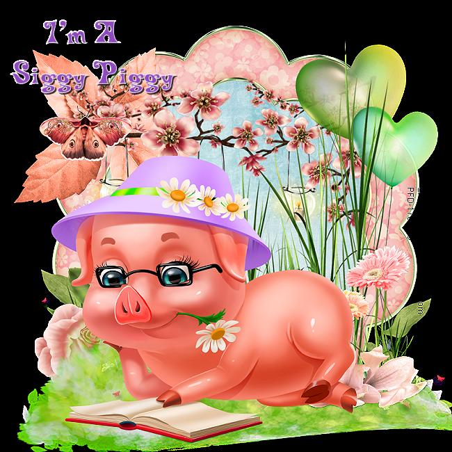 Who's a Siggy Piggy - Page 8 Siggy_66