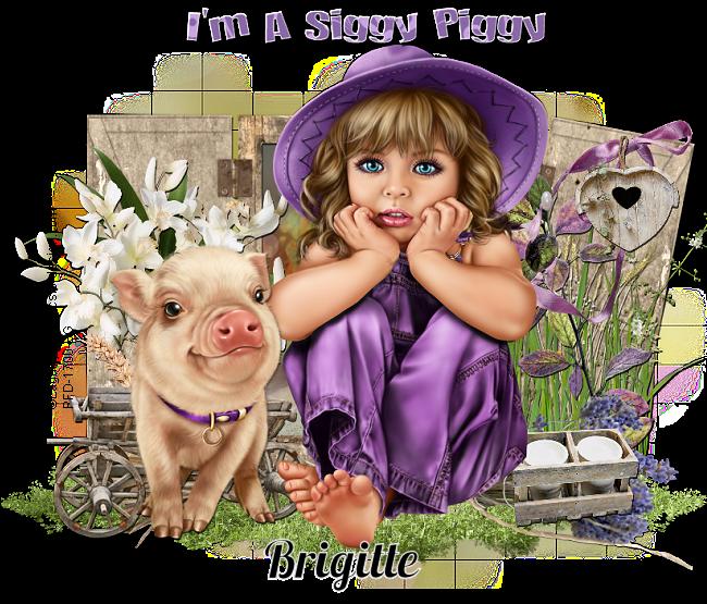 SIGGY PIGGY!!! Siggyp31