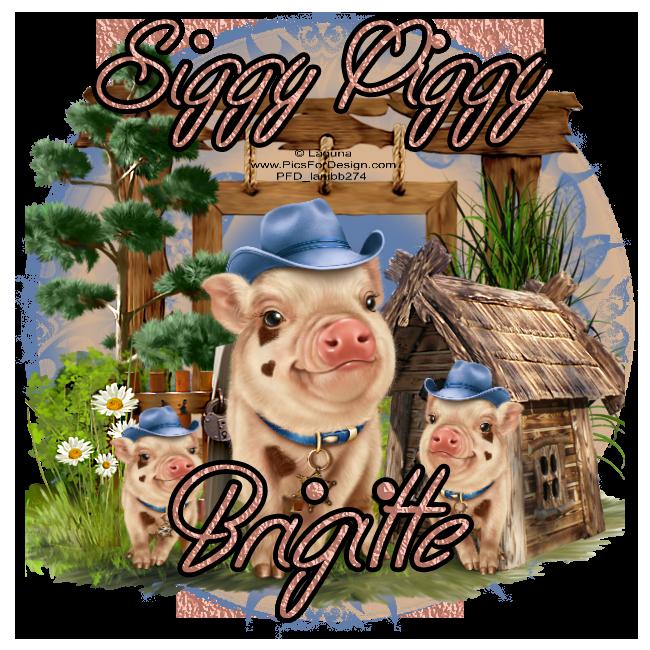 Who's a Siggy Piggy - Page 6 Siggyp34