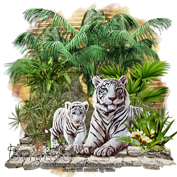 SHOW OFF ANIMAL TAGS Tigers12