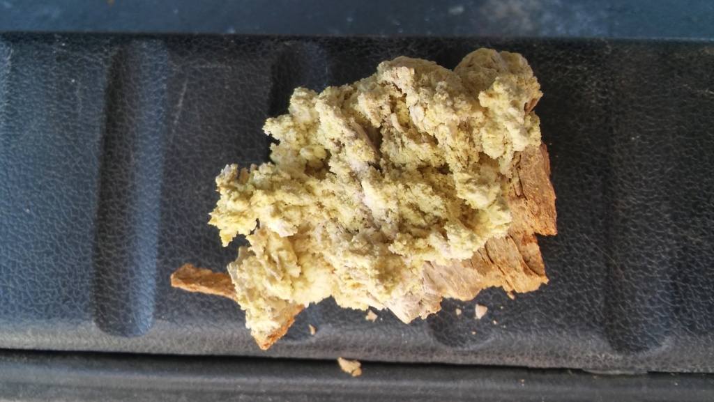 Duda mineral cantera Brunita 20190810